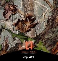 wtp-419